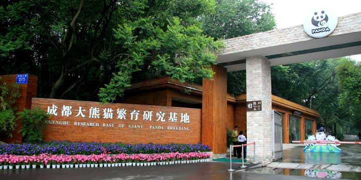 Chengdu Forschungsbasis der Riesenpanda-Zucht