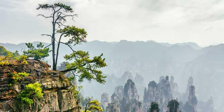 der Zhangjiajie Nationale Waldpark