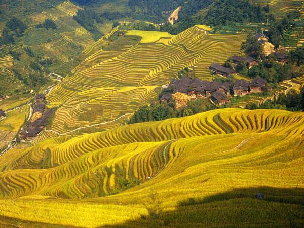 4 Tage Guilin Reise mit Longji