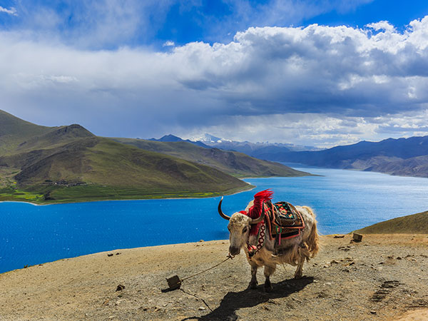 5 Tage Reise von Lhasa zum Yamdrok-See